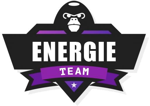 teamdirectenergie.com
